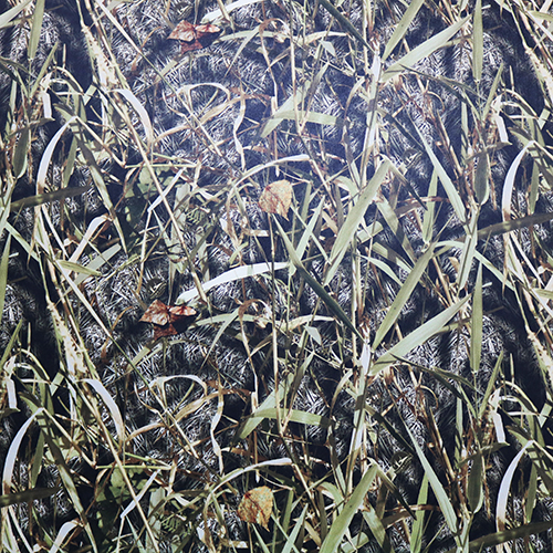 Hidden Creek Marsh Camouflage Vinyl