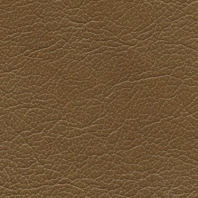 Salvador Genuine Leather Acorn