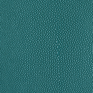 Urban Exotics Eel Contract Vinyl Teal
