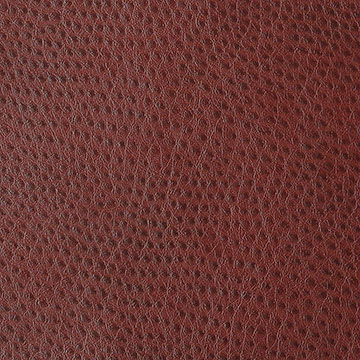 outback ostrich vinyl